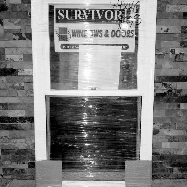 Survivor DH replacement windows